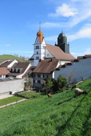 Pfarrkirche Peter und Paul Willisau