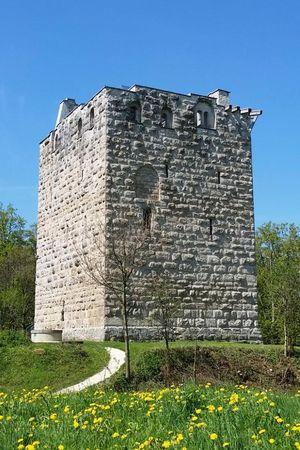 Burgruine Kastelen Alberswil