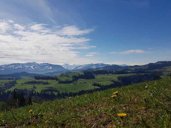 Menzberg - Wolhusen (Alpenpanorama-Weg)