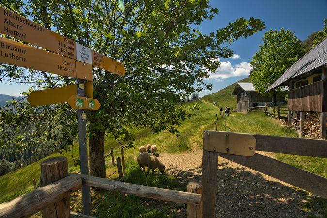Rundtour Luthern - Ober Scheidegg