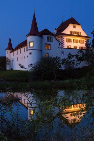 Open Air Kino im Wasserschloss Wyher