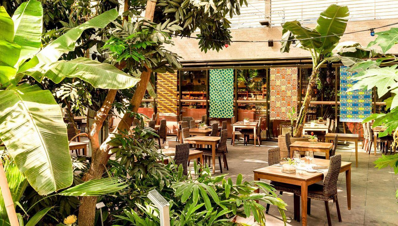 Restaurant MAHOI im Tropenhaus Wolhusen
