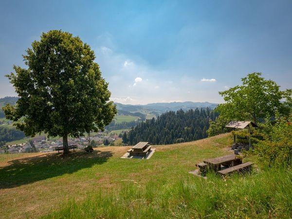 Hergiswil - Feuerstelle Hickern