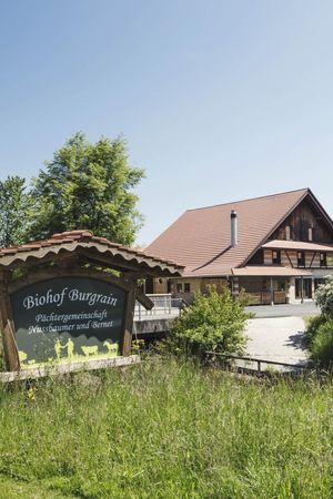Restaurant Burgrain-Stube Alberswil