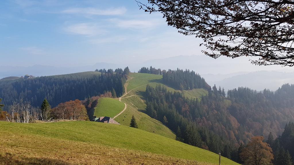 Panoramaweg Menzberg - Napf - Hübeli (Hergiswil)
